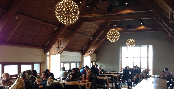 A photograph of a cafe with large windows, timber beams and large circular lights hanging from the ceilings.
