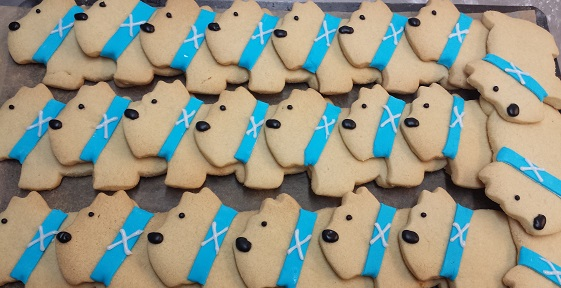 Photograph of shortbread biscuits shaped like dogs, with blue icing colours