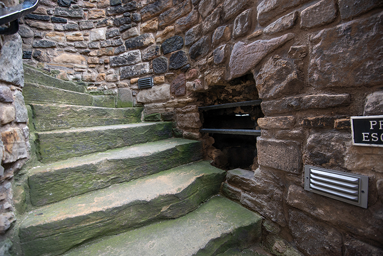 A hole in a wall with metal bars across it, leading on to some stone steps.